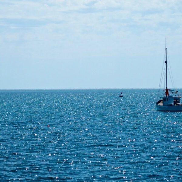 sailing boats, boats, blue, oceans, sailing, sail, sea, water